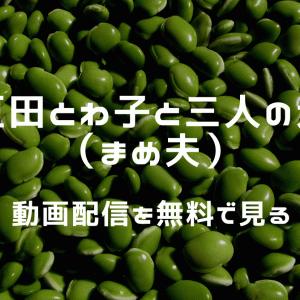 『大豆田とわ子と三人の元夫』(まめ夫)の見逃し配信を無料で見る