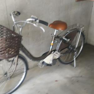 電動アシスト自転車買いました
