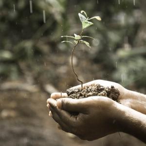 【知っトク!】叱らないで叱る方法!?子どもの成長の芽を摘まない伝え方教えます!