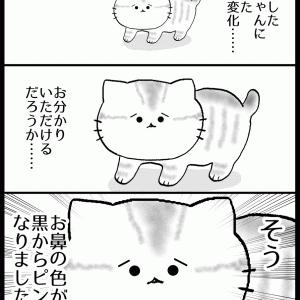 こまちゃんの変化