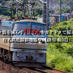 【有名鉄道撮影地巡り】年々数を減らすEF66をカケキクで撮る!【掛川-菊川】