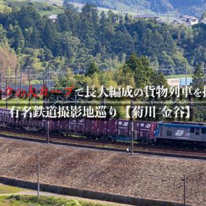 【有名鉄道撮影地巡り】カナキクの大カーブで長大編成の貨物列車を撮る!【菊川-金谷】