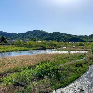 渡良瀬川C&R区域 オリジナルフィールドマップでポイント解説