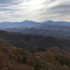 近所の山は権現堂山