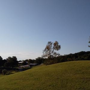 11月のまんのう公園ー竜頭の里の雰囲気