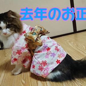 【森永ダース】ダースプレミアムピスタチオはあんまりピスタチオじゃなかった