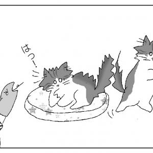 鳥の巣の形に疑問。緊急時に逃げられる?【猫の巣はどうか?】