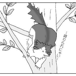 木に登るのは得意だけど、降りるのは苦手、そんな猫の話。