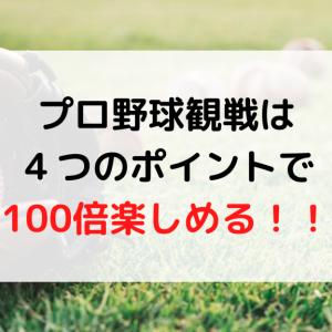 プロ野球観戦は4つのポイントで100倍楽しめる!!