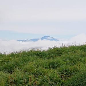 梅雨の晴れ間を狙って・・・ニッコウキスゲ大群落の和賀岳③ラスト