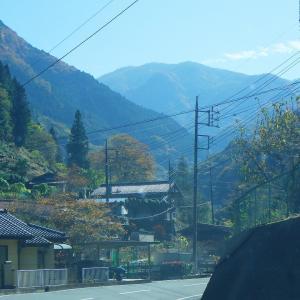 静かな山歩きを満喫~錦秋の西上州「檜沢岳」①
