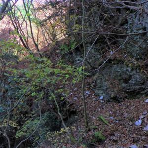 静かな山歩きを満喫~錦秋の西上州「檜沢岳」②ファイナル