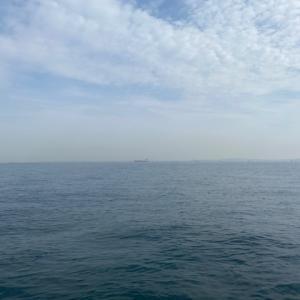 SUPフィッシング 激流の東京湾でコマセ釣り