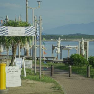 宮崎県宮崎市『青島』でスナップ撮影/ドローン撮影旅