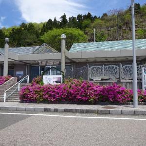 「道の駅河野(福井県・南越前町)」道の駅の入口直前で捕まっていました。( ̄ー ̄; ヒヤリ
