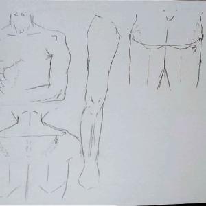 人体の練習2日目【骨について考える・筋肉の模写】