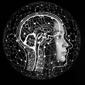 【AIとは何か?】人工知能の仕組みを絶対に分かるように説明します【画像認識】