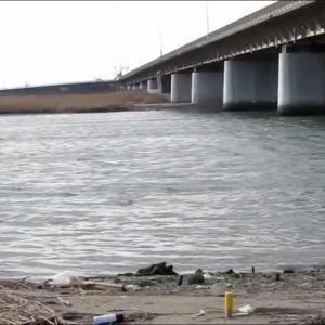 庄内新川橋 名四国道23号 橋の下 シーバス 魚釣りポイント 愛知