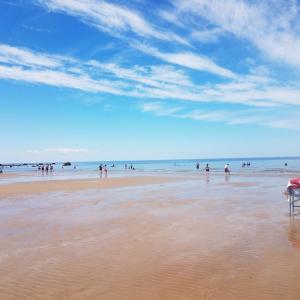 《夏休み》Cape Cod