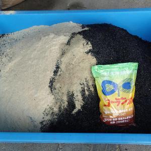 ふかふかした畑目指して もみ殻・くん炭・米ぬかを入れ土作り&ボカシ作り