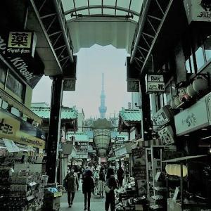 【東京都】外出自粛要請後の「浅草」を歩く202003