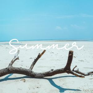 148☆TicTok 嵐IN THE SUMMER♡素人によるダンス解説にチャレンジ!