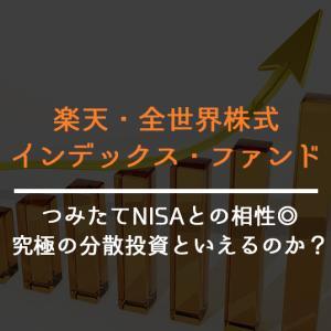 【つみたてNISA】楽天・全世界株式インデックス・ファンドは究極の分散投資?【私も買ってます】