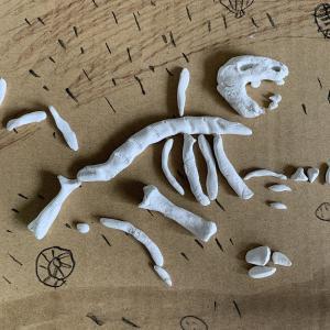 恐竜は鳥、鳥は恐竜。化石工作実験中。