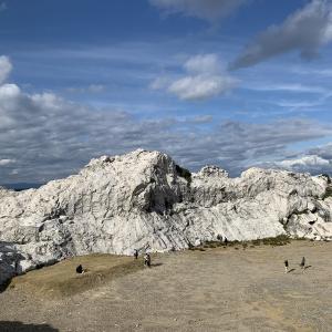 和歌山はジオパーク天国!白崎海岸が超迫力!