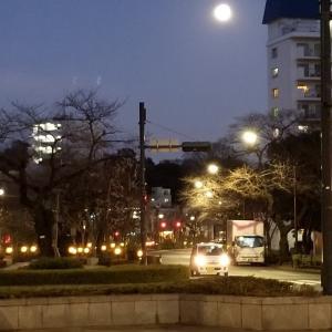 播磨坂から見える満月