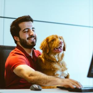 CodeCampの無料体験が神すぎた!感想と有効活用する方法を紹介