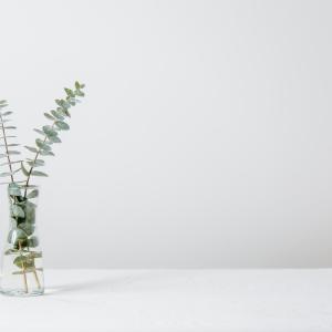 英単語「vase」ってどんな意味? ゼロから英語を学ぼう!!