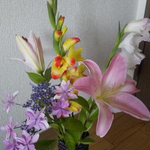 お花いただきました