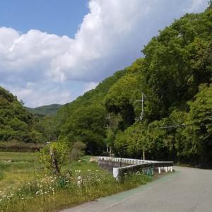 雨森山(日生中央より)