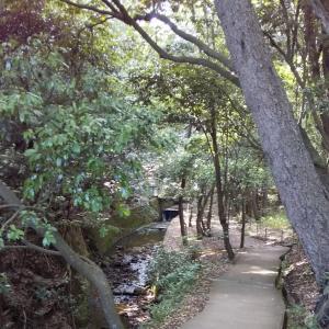 中山寺の奥の院、遠すぎ!