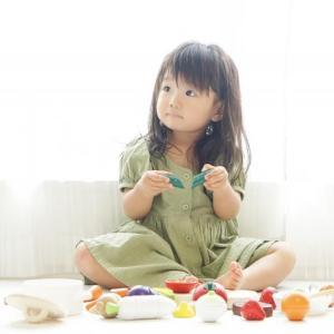 【おもちゃの選び方】子供のおもちゃは何がいいのか?選ぶポイントや効果は?