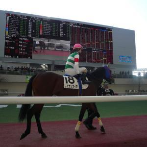 阪神芝1200m(2歳戦)種牡馬別ランキング