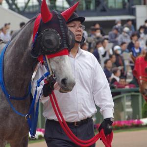 京都牝馬S 傾向 内枠が全然は走らない傾向。