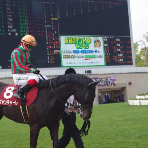 <神戸新聞杯 傾向>中京開催でも傾向持続すれば絞れるレース