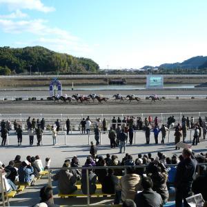 <京阪杯 傾向>傾向があまりなく今年は阪神開催なので、データは使いづらいレース。
