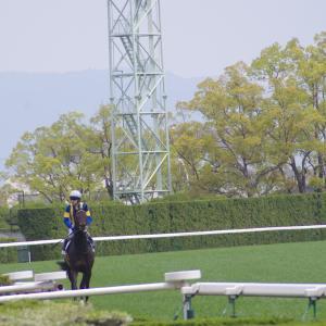 新潟ダ1800m(2歳戦)種牡馬別ランキング