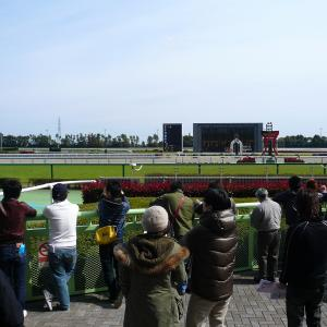 札幌ダ1000m(2歳戦)種牡馬別ランキング
