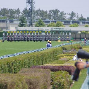 京都芝1200m(2歳戦)種牡馬別ランキング