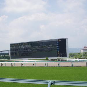 <富士S 予想>社台グループ生産馬から期待値の高いこの馬を本命に!