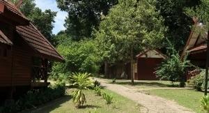 ちょっと後悔している、森の中のバンガローに行くべきだったかな?