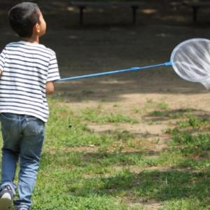 幼児期に必要な感性を成長、教育させる方法とは