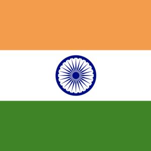 インド債券購入 楽天証券にて 安全資産目的
