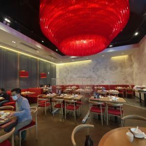 香港 飲茶  Dim Sum Bar 點一龍 安くて美味しいお店!