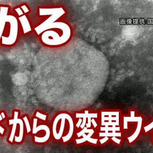 日本のコロナ対策に喝だ!成功している周辺諸国に学ぼう~
