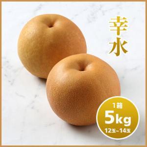 プリティ長嶋さん推薦!千葉県特産梨 梨を食べればコロナも無し??トレトレストアで特価販売中!